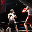 Fight_Night_11 thumbnail