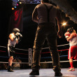 Fight_Night_5 thumbnail